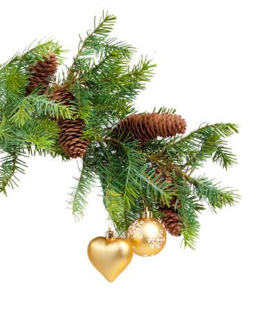 evergreen branch: Navidad con adornos de concepto sobre fondo blanco