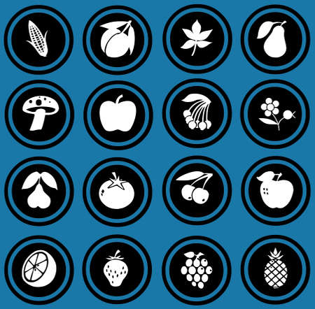 fruits and vegetables set   fruits icons  photo