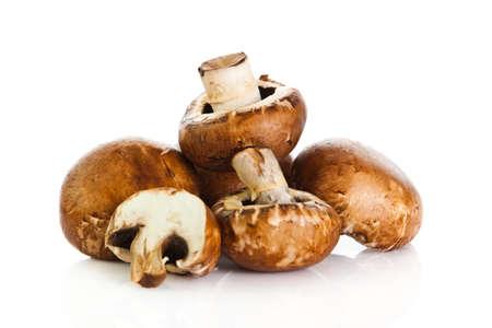 agaricus: Fresh mushroom champignon isolated on white background .  fresh champignon