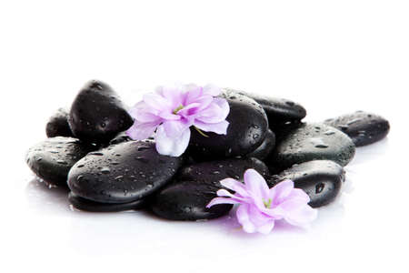 Spa stones and purple flower, isolated on white. flower in stone with drops of water photo