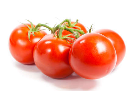 Closeup of tomatoes on the vine isolated on white. Tomato branch Stock Photo