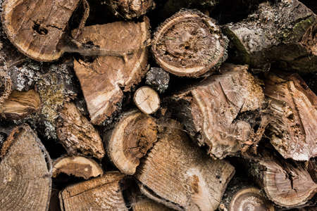 wintery day: Firewood stacked Stock Photo