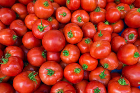 domates: red tomatoes at the market. Fresh ripe tomatoes