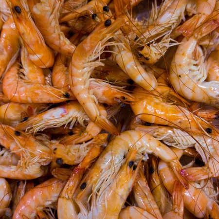 mediteranean: Shrimps.  Shrimp background.
