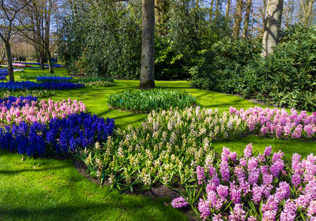 landscaped garden: Beautiful Garden.  Garden landscape.  landscape design Stock Photo