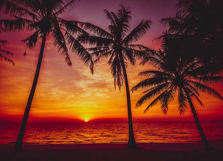 sunset tropical beach.  Beautiful sunset Фото со стока