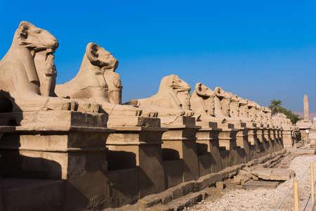 templo: Avenida de la esfinge en Luxor. Amón Templo de Luxor. Egipto Foto de archivo