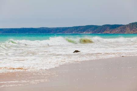 algarve: The beach on Algarve coast.  Continental Europes most South-western point. Portugal Algarve Region Sagres