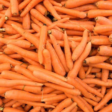 carrot: Carrots.  Fresh organic carrots.  Background texture of  carrots.