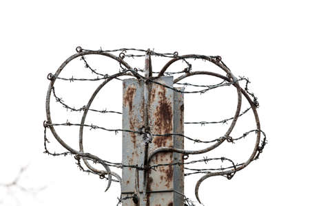 barbed wires: barbed wires on white background. The concept of the refugees
