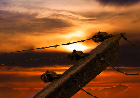 illegals: Barbed wire on sunset sky background.