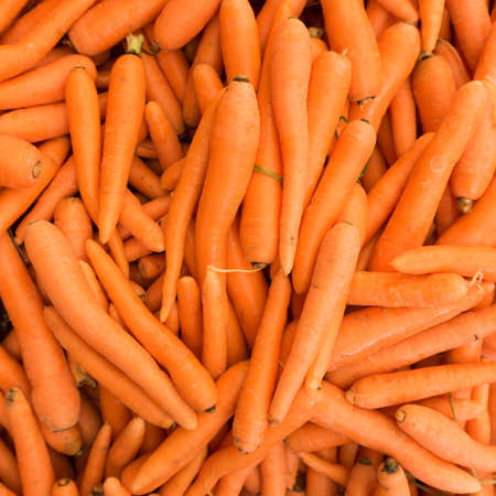 Carrots.  Fresh organic carrots.  Background texture of  carrots.