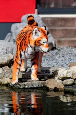 groomed: Samoyed dog repainted on tiger. groomed dog. pet grooming. Samoyed dog Stock Photo