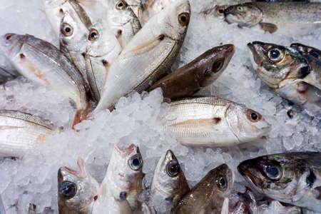 fond de poisson cru. Le poisson frais sur la glace