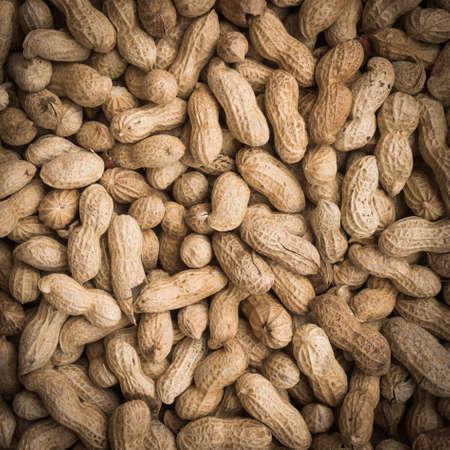 groundnut: fruits of groundnut