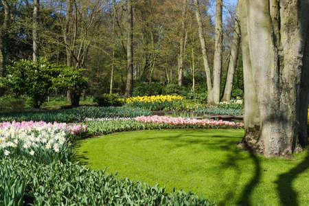 the netherlands: Keukenhof garden, Netherlands