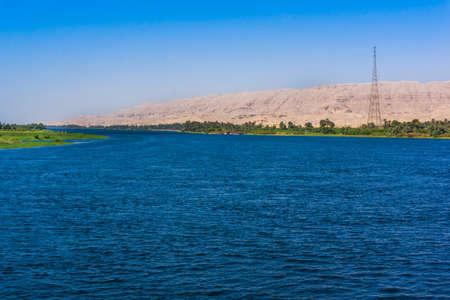riverside tree: Nile river, Egypt Stock Photo