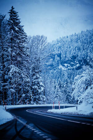 blue mountains tree frog: winter road in snow.  mountain road with snow
