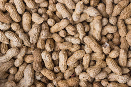 earthnut: groundnut background