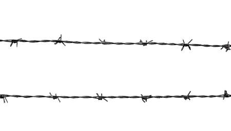 barb wire isolated: barbed wire isolated on white
