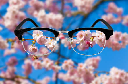 protecting spectacles: Cherry blossom, Optic health care concept. Medical optics concept with glasses. vision glasses