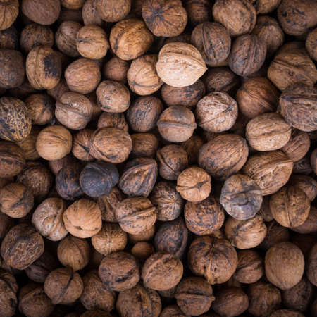 protein crops: Walnut background