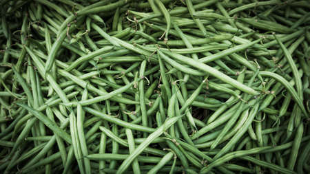 green background: Green Beans Background