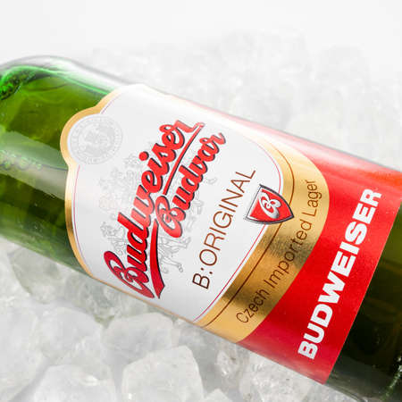 pilsner glass: DUSSELDORF, GERMANY - APRIL 21, 2016: Budweiser lager beer isolated on white background. Budweiser is made by Budweiser Budvar in Czech Republic