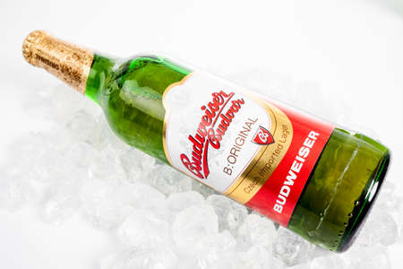 budvar: DUSSELDORF, GERMANY - APRIL 21, 2016: Budweiser lager beer isolated on white background. Budweiser is made by Budweiser Budvar in Czech Republic