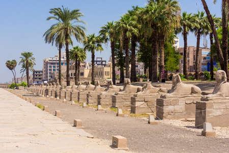 egyptology: Avenue of the Sphinxes, Egypt