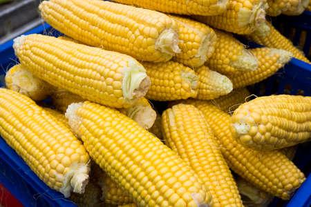 heathy: Corn cobs