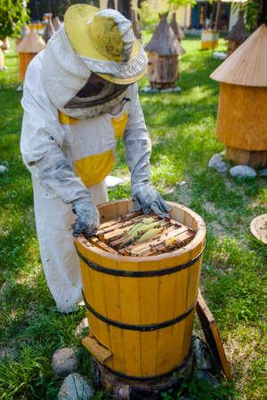 Beekeeper on apiary.  Working apiarist.  Beekeeper holding frame of honeycomb