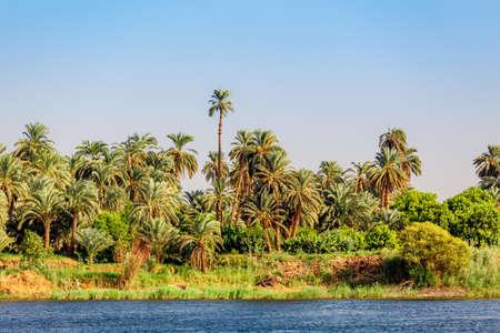 Nile river. Egyptian Nile