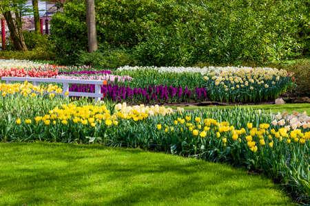 정원 풍경입니다. 현대 정원 디자인입니다. 조경 된 정원 및 정원