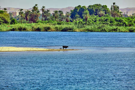River Nile in Egypt. beautiful  landscape Stock Photo