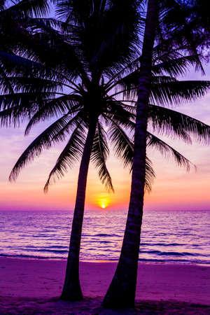 Silueta de palmeras al atardecer. puesta de sol y playa Hermosa puesta de sol sobre el mar