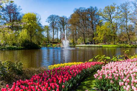 Keukenhof park in Netherlands 스톡 콘텐츠