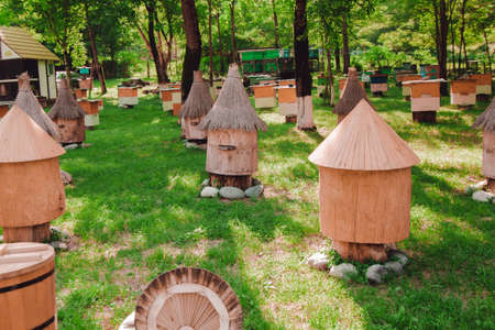 wooden beehive, for beekeeping agriculture Stock Photo - 94137116
