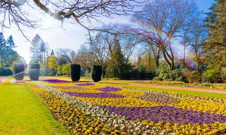spring garden scenery 写真素材