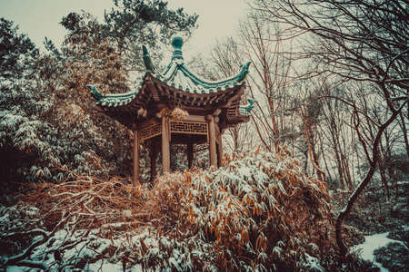 pagoda covered with white snow