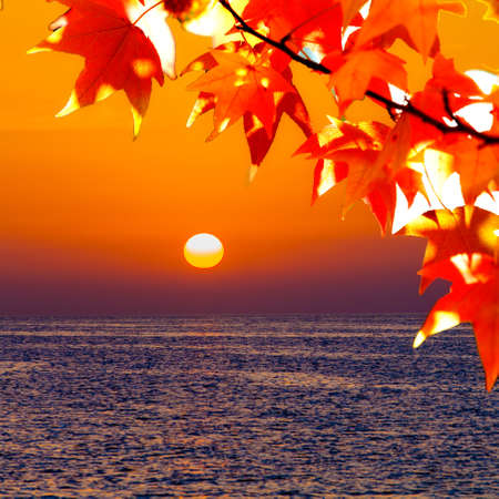 Beautiful sunset over the sea. beauty landscape. Wonderful sunrise Stock fotó