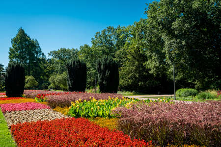 A view of a lawn and flower garden. beautiful park
