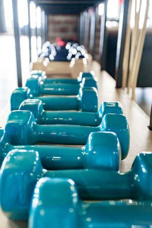 Light blue dumbbells lie on the shelf of the fitness room