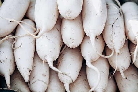 Lots of white daikon radish. White daikon radishes lie on top of each other.