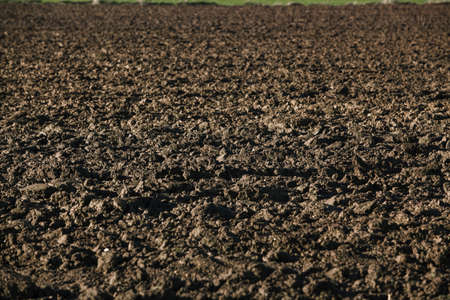 Ploughed field. Background from a plowed field