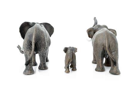 Elephant family. Backside of the elephant isolated on white background. Stockfoto