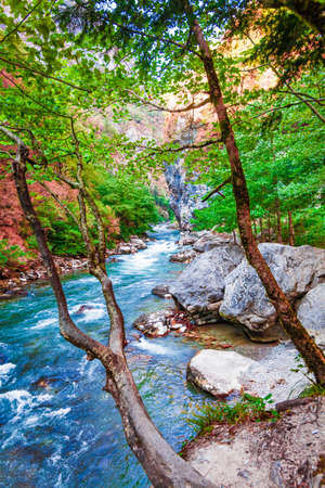 beautiful landscape, nature. forest mountain and blue stream, beauty nature scenery view background. Zdjęcie Seryjne