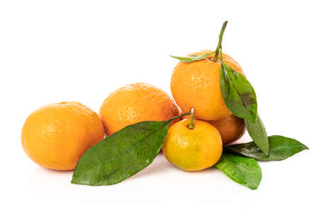 Ripe mandarines with leaves close-up on a white background