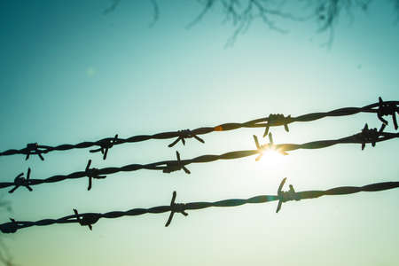 Background of barbed wire against the sky. 免版税图像 - 161235310