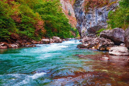 beautiful landscape, nature. forest mountain and blue stream, beauty nature scenery view background. 免版税图像